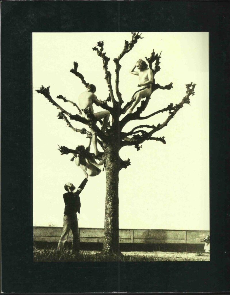 Ranft Schade Morgner Baumbesteigung Aktion